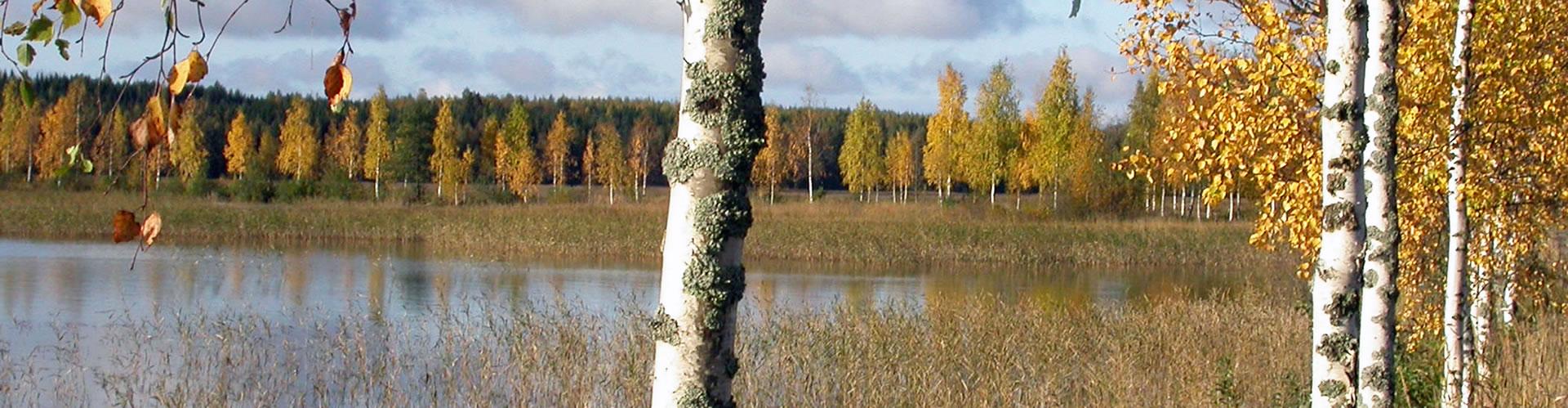Savolinna, Finlandia