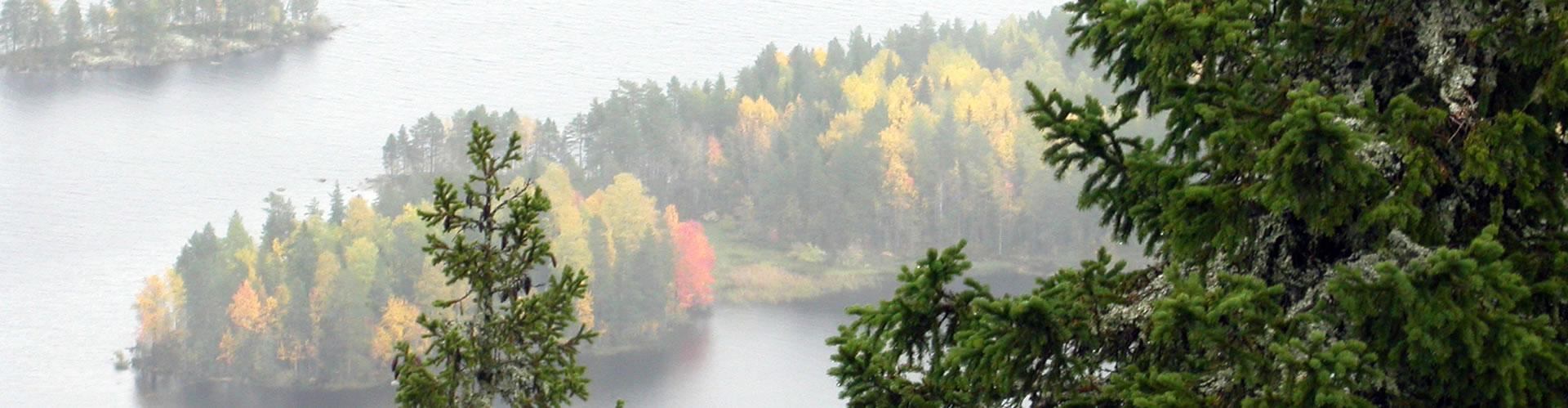 Parque Nacional de Koli Finlandia