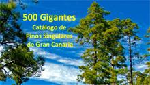 500 Gigantes